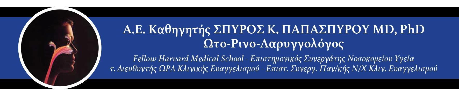 papaspyrou-banner